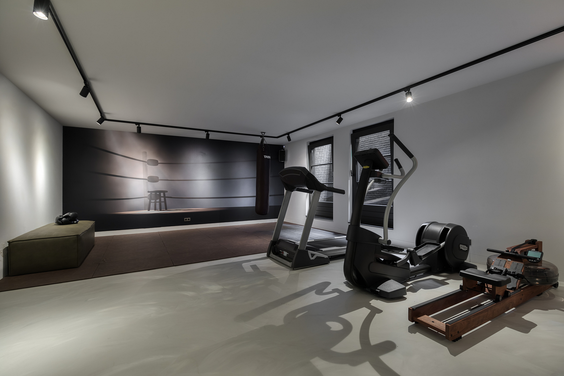 home gym with boxing ring wallposter and cardio equipment